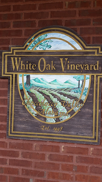 Wine Judging at White Oak Vineyards
